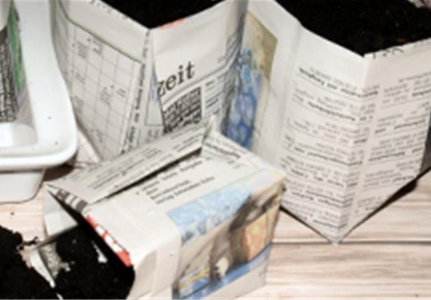 Anzuchttöpfe aus Papier